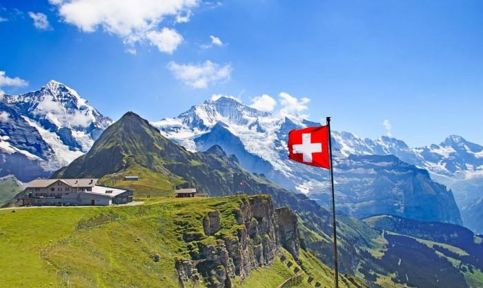 """Szwajcaria to najbardziej """"kocie państwo na świecie"""